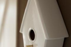 Heivlinder 20140129-0174 (Small)