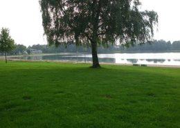 Camping WiesenSee